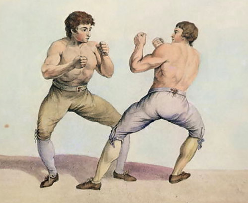 daniel-profile-internal-boxer-v01